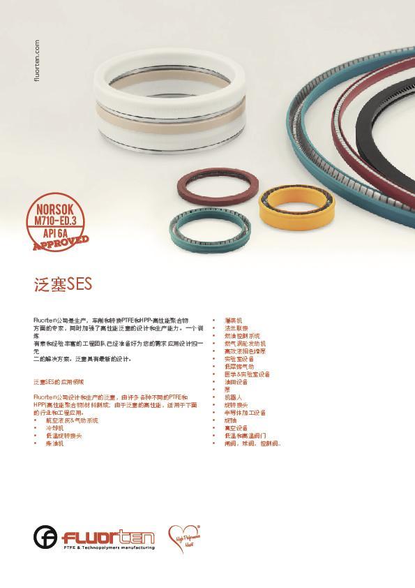 Immagine FLUORTEN_Flyer_Spring_Energized_Seals_CN