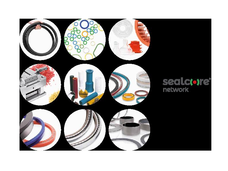 Immagine SEALCORE_2020_Descritpion_Shortcut_CN